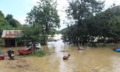 Thủy điện Buôn Kuốp xả nước, dân nuôi cá trắng tay