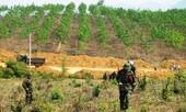 Mỹ hỗ trợ nạn nhân bom mìn Việt Nam