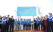 Trồng 11.000 cây chắn sóng tại biển Quảng Ninh