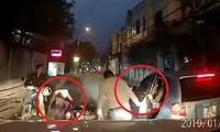 Ô tô mở cửa gây tai nạn, người đàn ông xuống xe và điều bất ngờ xảy ra