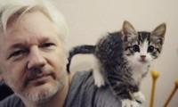 Ông chủ WikiLeaks Julian Assange. (Ảnh: CNN)