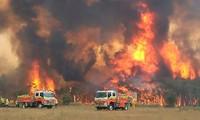 Lực lượng chức năng Úc không thể kiểm soát tình hình cháy rừng ở nhiều khu vực. (Ảnh: BBC)