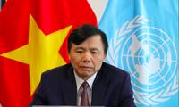 Đại sứ Việt Nam tại Liên Hợp quốc Đặng Đình Quý