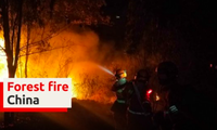 Đám cháy lớn bùng lên ở tỉnh Tứ Xuyên
