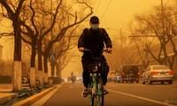 Một người dân Bắc Kinh trong điều kiện trời mù mịt cát. (Ảnh: Reuters)