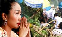 Sao Việt đau lòng lên tiếng sau vụ cây đổ khiến học sinh tử vong