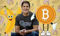 Vì sao tỷ phú Mark Cuban nói không với bitcoin