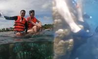 Quang Vinh, Phạm Quỳnh Anh bị chỉ trích thiếu hiểu biết khi ngồi lên rạn san hô
