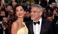 Showbiz 20/11: Tài tử George Clooney từng gặp tai nạn suýt chết