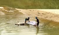 Lén lút vứt xác lợn xuống sông giữa tâm dịch tả phức tạp