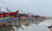 Sáng 14/10, bão số 8 vào vùng biển từ Nam Định đến Quảng Bình, gió giật cấp 10