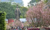 Tổ chức lựa chọn Đại sứ thiện chí hoa anh đào 2019 trong khuôn khổ Lễ hội hoa anh đào Nhật Bản-Hà Nội 2019