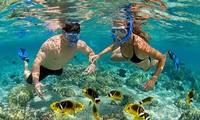 Nhiều chương trình ưu đãi hấp dẫn du khách tại Phú Quốc