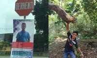 Anh chàng treo banner quảng cáo bản thân để tìm vợ