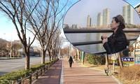 Cô gái Việt chia sẻ cuộc sống hiện tại ở tâm dịch Daegu Hàn Quốc
