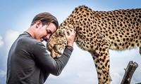 Bỏ việc lương cao để đến châu Phi sống, chơi đùa với động vật hoang dã