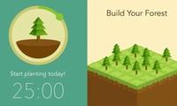 Ứng dụng trồng cây ảo giúp hạn chế dùng điện thoại và truyền cảm hứng trồng rừng