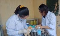 Trạm cứu hộ động vật phi lợi nhuận của 25 bạn trẻ