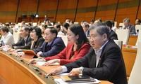 Các đại biểu Quốc hội khóa XIV tham gia biểu quyết tại kỳ họp.