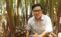 Chàng kỹ sư trẻ 'hoá phép' bắt cây dừa nước tiết ra mật