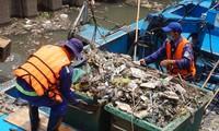 Hai cơn mưa ở TPHCM làm chết gần 14 tấn cá trên kênh
