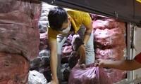 Giúp nông dân Vĩnh Long tiêu thụ khoai lang tím ùn ứ vì dịch COVID