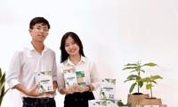 Giấc mơ đưa bơ Việt ra thế giới