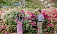 """""""Bão like"""" với bộ ảnh bên hoa giấy của cặp đôi sinh viên trường ĐH Tôn Đức Thắng"""