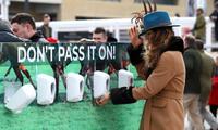 Các hộp đựng dung dịch sát khuẩn đã được lắp đặt tại một trường đua ngựa trong Festival Cheltenham (Ảnh: Getty Images)