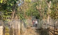 Vùng đất quy hoạch nghĩa trang nhân dân Thành phố Sơn La và đất quy hoạch của trường Đại học Tây Bắc chỉ cách nhau 1 con ngõ nhỏ. Ảnh Nghiêm Huê