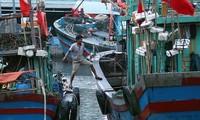 Ngư dân đưa thuyền vào nơi an toàn để trú bão