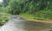 Viwasupco không có bất cứ hành động nào ứng cứu ngăn chặn ô nhiễm nguồn nước.