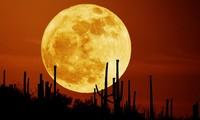 Việt Nam đón siêu trăng vào đầu tuần tới