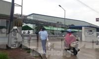 Công nhân Tenma Việt Nam vẫn làm việc bình thường ngày 26/5. Ảnh: Nguyễn Thắng