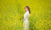 Nữ sinh Kinh Công đẹp dịu dàng giữa cánh đồng hoa cải vàng rực rỡ