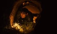 Thật bất ngờ khi điện ảnh Hàn đã tham gia dòng phim về những kẻ cướp mộ cổ