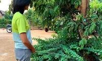 Ảnh đặt vòi nước tưới cây ở vị trí nhạy cảm, H'Hen Niê làm dậy 'sóng' cộng đồng mạng