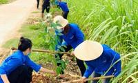 Đoàn viên thanh niên xã Tân Xuân (huyện Tân Kỳ, Nghệ An) thực hiện hàng cây xanh tuổi trẻ. Ảnh: Phương Nguyễn