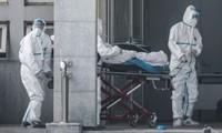 Số người chết vì virus corona Vũ Hán toàn thế giới đã lên đến con số 55
