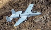 """""""Lợn chiến"""" A-10 Warthog của Không quân Mỹ"""