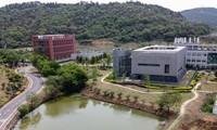 Viện virus học Vũ Hán