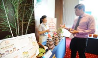 48 dự án khởi nghiệp sáng tạo thanh niên nông thôn tranh tài tại Bán kết (phía Nam)
