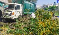 Xe chở rác mất lái tông bật gốc cây xanh ven đường