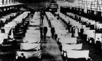 Vì sao đại dịch 'cúm Tây Ban Nha' giết chết hơn 50 triệu người?