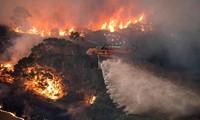 Vụ cháy nào kinh hoàng nhất trong lịch sử nhân loại?