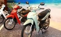 Wave Alpha - một trong những mẫu xe bán chạy nhất của Honda Việt Nam.