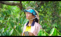 Hình ảnh trong Vlog của H'Hen Niê.