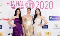 Hashtag #Hoahauvietnam2020 đạt hơn 60 triệu lượt xem trên TikTok trong chưa đầy 1 ngày