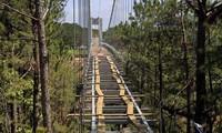Cầu đáy kính dài tới 255m