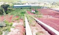Một lô đất nông nghiệp bị phân lô bán nền ở Phường 7, Đầ Lạt